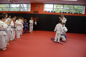 What's the Difference between Brazilian Jiu Jitsu and Karate